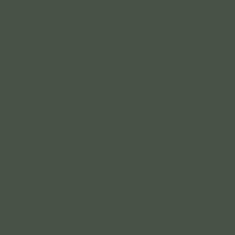 RAL 6020 - chromová zelená