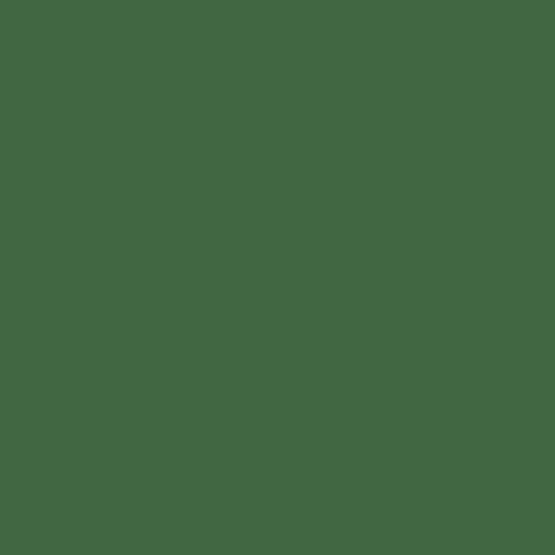 RAL 6002 -listová zelená